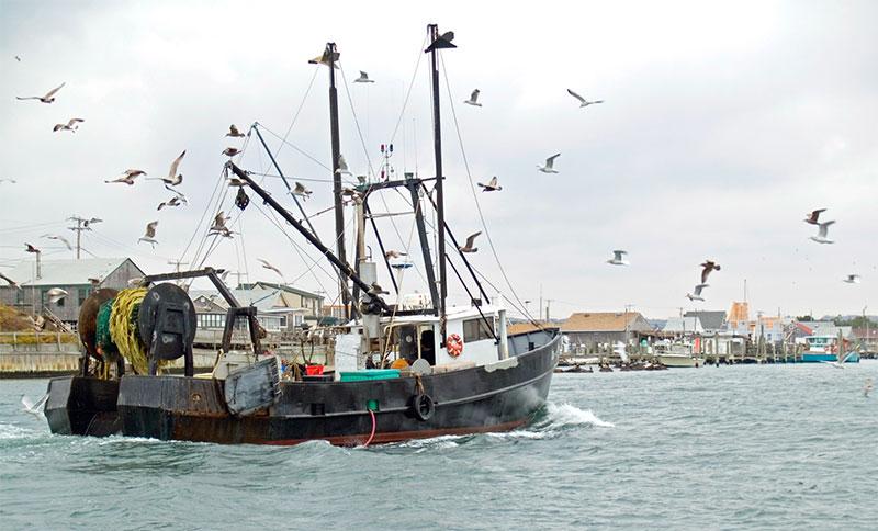 Un premier bateau de pêche électrique en Amérique du Nord